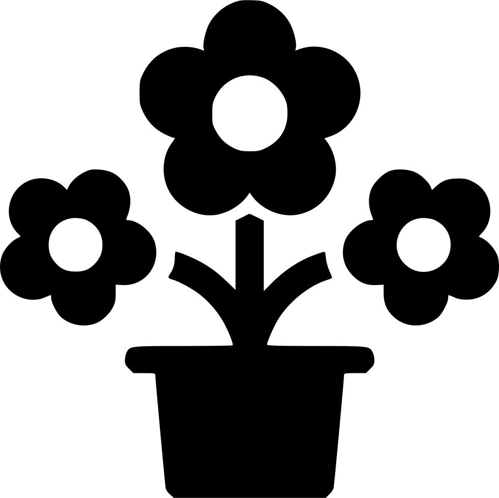 Bloemen en Planten Bezorgen